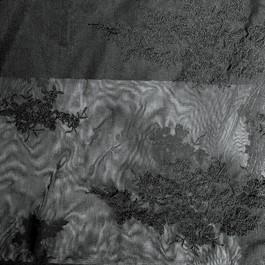 Stoff 0236 Stickerei Spitze auf feinem Tüll - Tiefschwarz